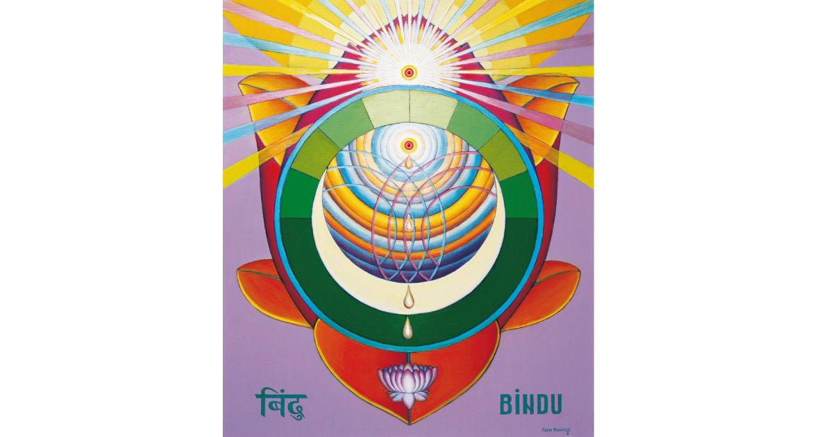 Bindu Chakra